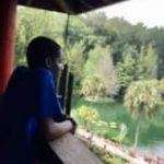 A SWAG summer session participant leaning against a wooden railing and gazing at a pond surrounded by trees