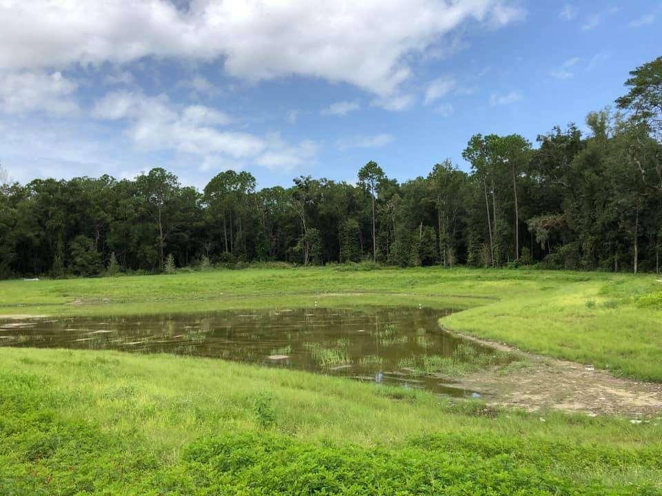 The retention pond near the Linton Oaks neighborhood
