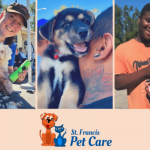 A flyer for St. Francis Pet care, showing three photos of people holding dogs. One photo shows a person grooming a small dog.