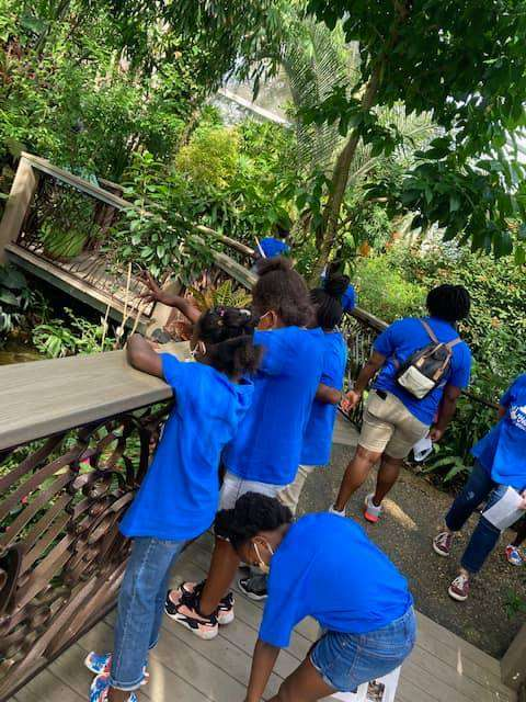 SWAG summer session students interact with the Butterfly Rainforest at the Florida Museum of Natural History in July 2021