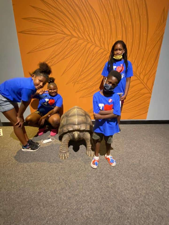 Four SWAG summer session students pose on either side of a turtle statue at the Florida Museum of Natural History